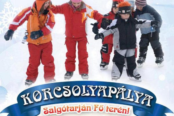 (Forrás: www.salgotarjan.hu)