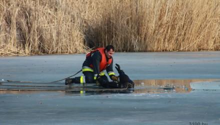 3100.hu Fotó: Jégről mentési gyarkolatot tartottak a tűzoltók a Tóstrandon