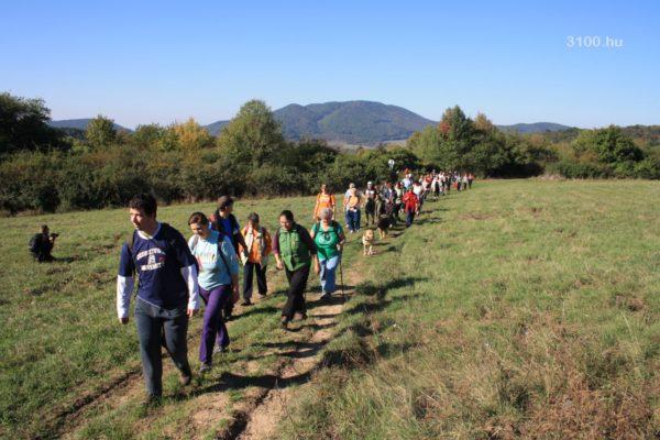 3100.hu Fotó: A Világ Gyalogló Nap programjain az elmúlt években több százan vettek részt