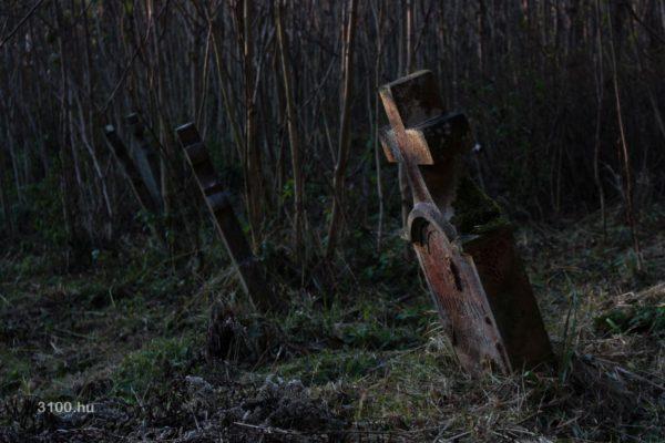 3100.hu Fotó: Inászó temetőjének egy részét már visszafoglalta a természet
