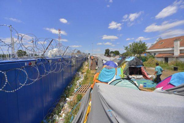 Migránsok sátortábora a vajdasági Kelebiánál, a szerb-magyar határ közelében, a határvonalon húzódó magyar védőkerítés mellett. A határ szerbiai oldalán az Európai Unió nyugati államaiba igyekvő több száz migráns táborozik arra várva, hogy valahogyan bejusson Magyarországra. (MTI Fotó: Molnár Edvárd)