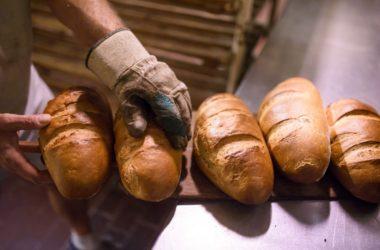 Kisült rozskenyerek a Szabó Andrea pékségben Karancslapujtőn (MTI Fotó: Komka Péter)