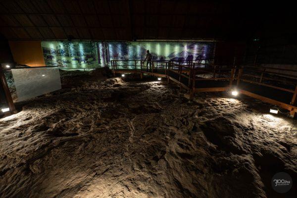 Az Ipolytarnóci Ősmaradványok természetvédelmi terület egyik bemutatócsarnoka (3100.hu Fotó: Komka Péter)