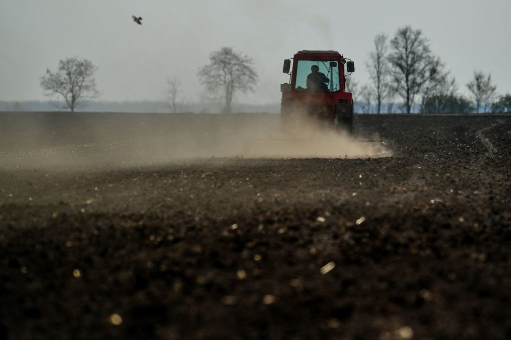 Porzik a szántóföld a traktorok után (Fotó: MTI/Czeglédi Zsolt)