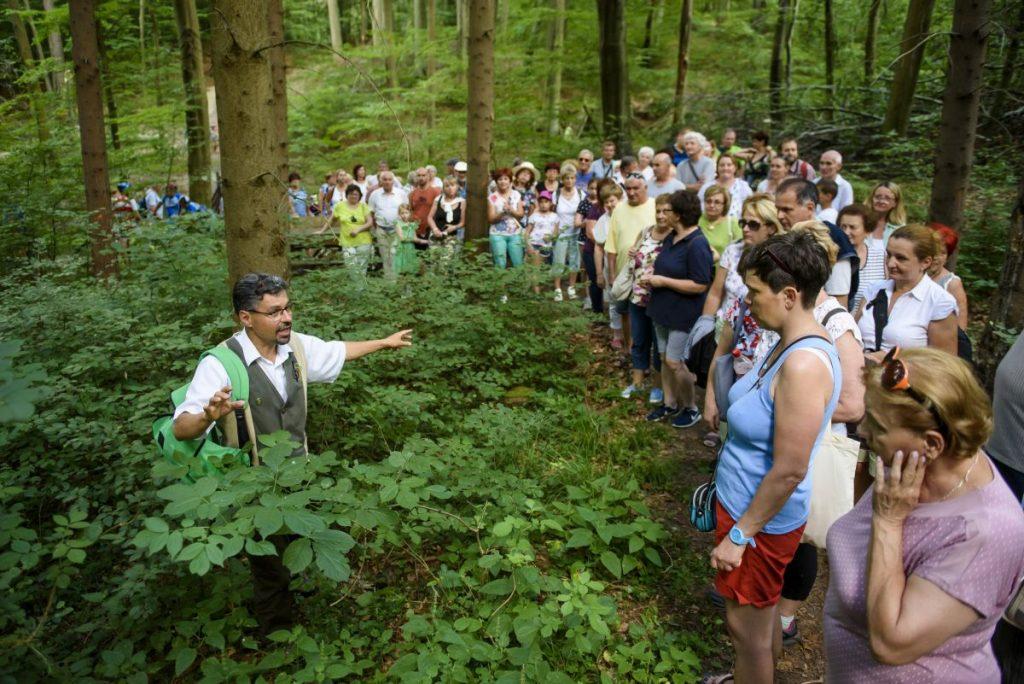 Szabó Lajos erdőmérnök, a Muzsikál az erdő alapítvány elnöke erdei sétát vezetett Eresztvény környékén (Fotó: MTI/Komka Péter)
