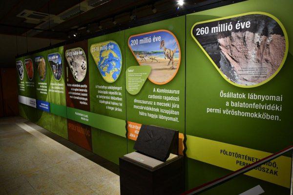 Az új kiállítás részlete (Fotó: Bükki Nemzeti Park Igazgatóság)