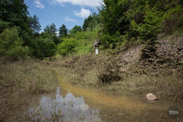 3100.hu Fotó: Időszakostó alakult ki a Medves oldalábantalálható Kutató-bányában (Új-bányában)