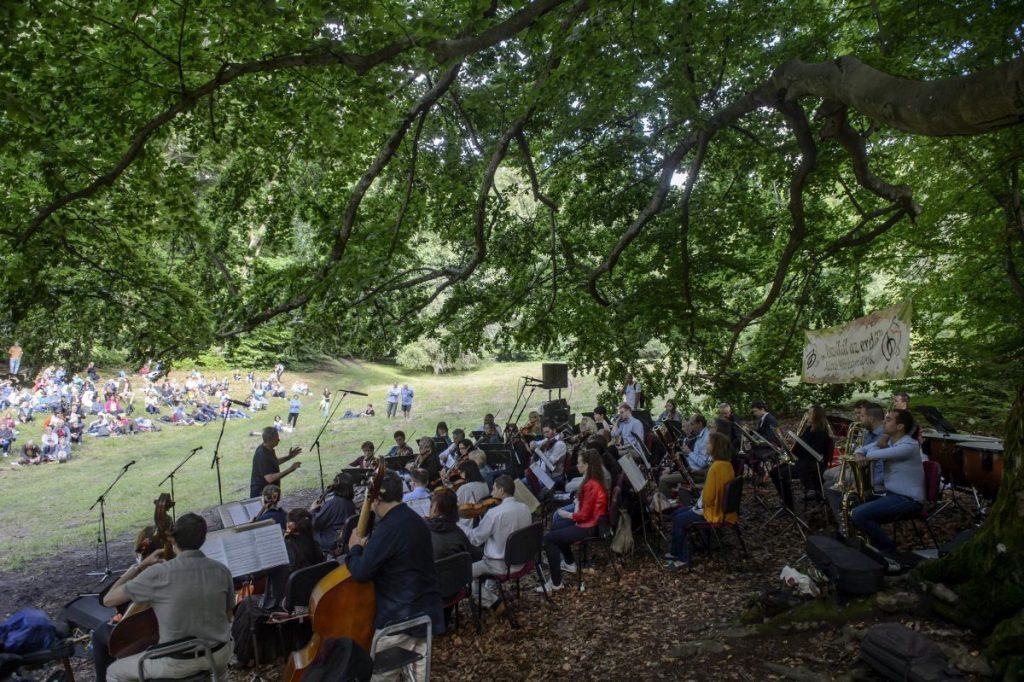 A Duna Szimfonikus Zenekar koncertje a Muzsikál az erdő - Mátrai Művészeti Napok eresztvényi rendezvényén (Fotó: MTI/Komka Péter)