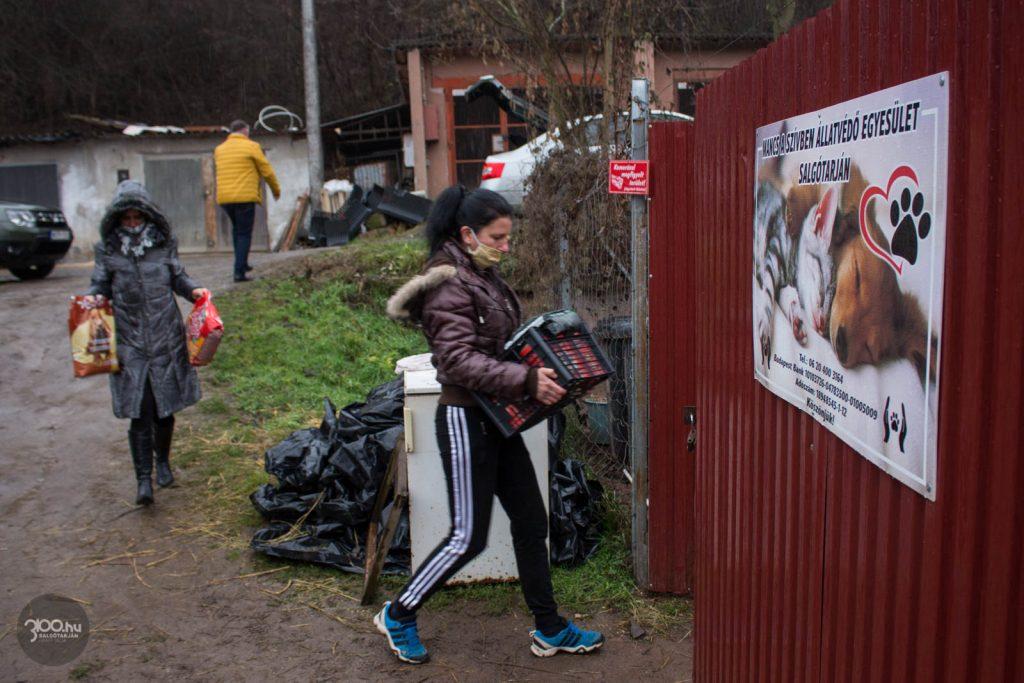 3100.hu Fotó: Négy salgótarjáni menhely részesült az adomány állateledelből, köztük a Mancs a Szívben Egyesület