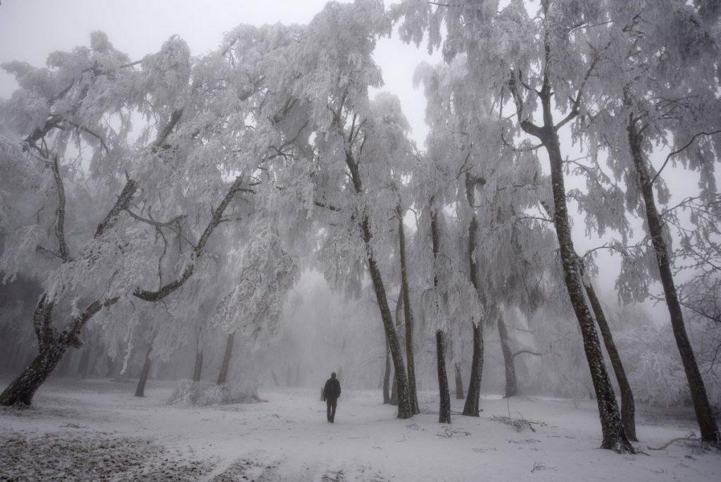 Zúzmarába borult a táj a Felső-Mátrában (Fotó: MTI/Komka Péter)