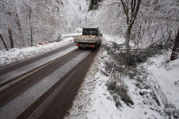 3100.hu Fotó: Behajolnak az út fölé a fák a hó súlya alatt a Salgóbányára vezető úton, számos ponton a korábbi tűzoltói beavatkozások nyomát látni
