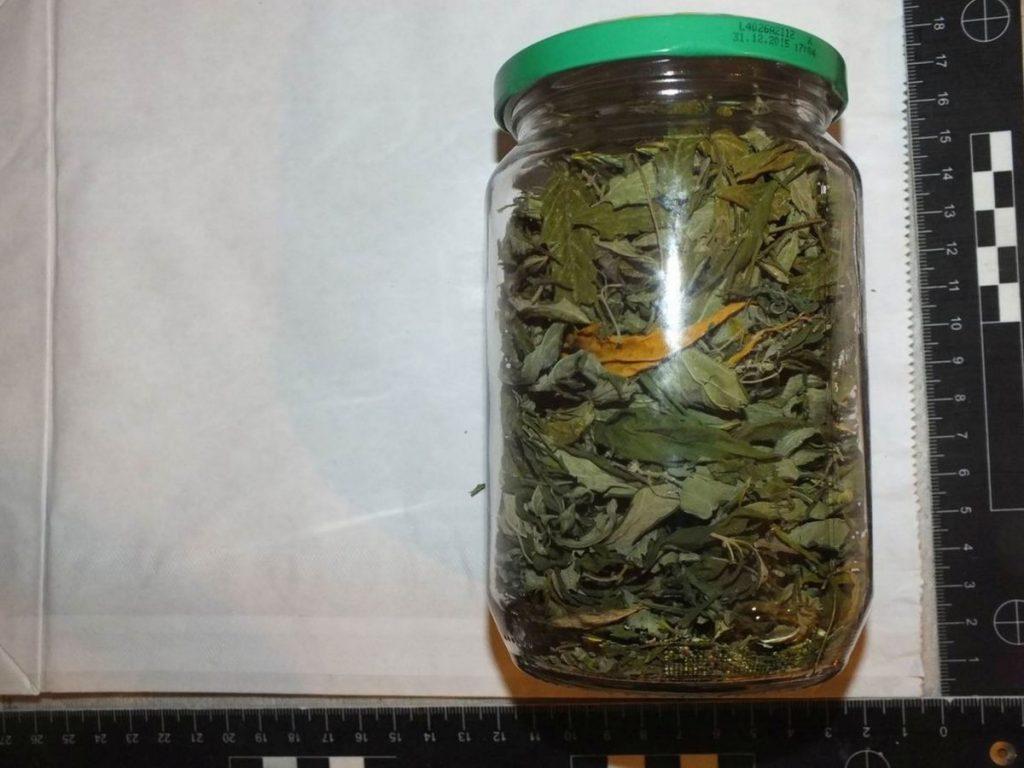 A férfi lakásán növényi magvakat és törmeléket, valamint több növényi szárat is találtak (Fotó: Nógrád Megyei Rendőr-főkapitányság)