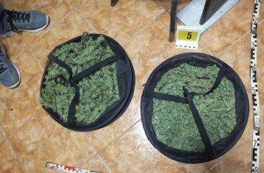 A rendőrök több mint ezer gramm növényi törmeléket találtak a férfi lakásán (Fotó: Nógrád Megyei Rendőr-főkapitányság)
