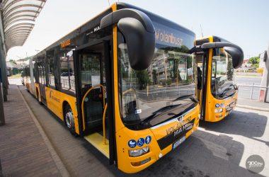 3100.hu Fotó: Új MAN Lion's City GL A23 típusú csuklós autóbuszok a salgótarjáni távolsági autóbusz-állomáson
